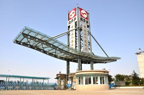 APP(中国)- 世界纸业十强,绿色纸业倡导者!